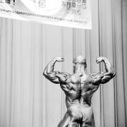 bodybuilding competition,бодибилдинг соревнования