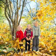 family-photos, baby, children, famili, семейная съемка, дети, осень, дети, желтые листья