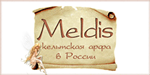 Кельтская арфа - группа «Meldis»